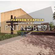 PNTNMRL