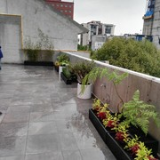 roof garden polanco