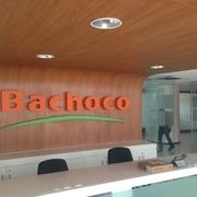REMODELACION CORPORATIVO BACHOCO