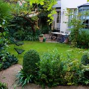 Jardín con muchas plantas
