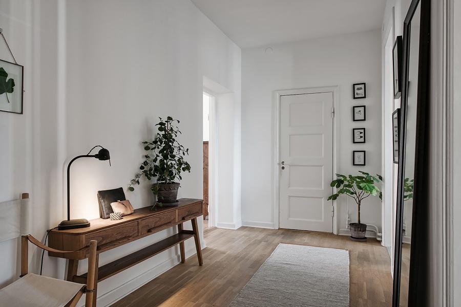 Recibidor con piso de madera, tapete y plantas