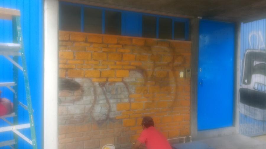 aplicacion de pintura vinilica en muro