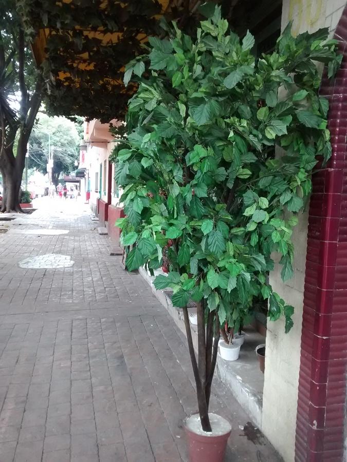 Foto rbol artificial con tronco natural de proyectos de for Arbol artificial decoracion