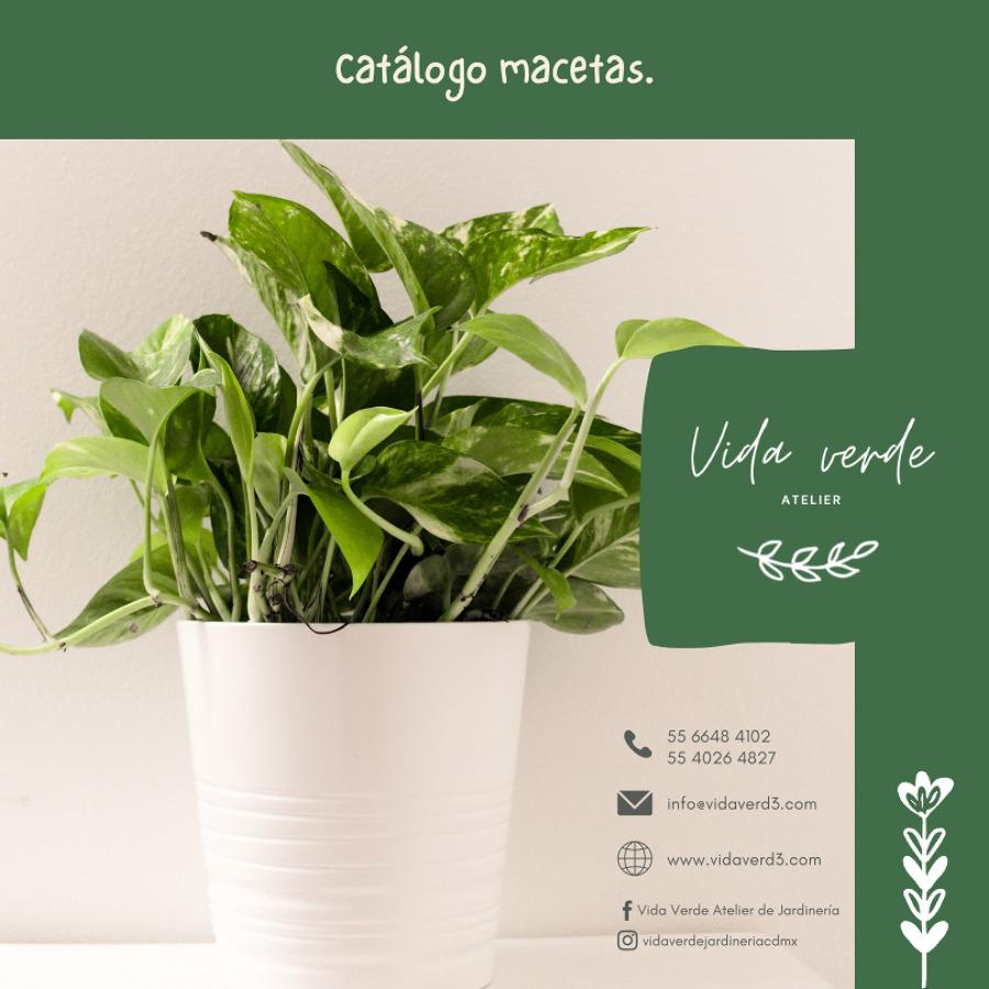 Catálogo de Macetas