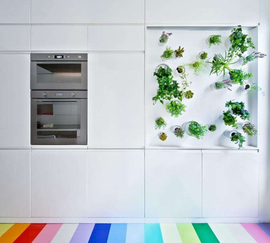 Cocina con plantas en la pared