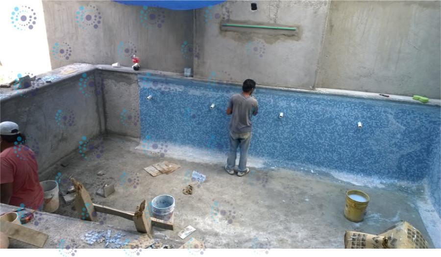 Foto colocacion de mosaico de alberca de albercas for Construccion de piscinas en monterrey