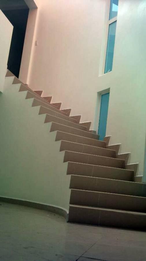 Escalera orgánica