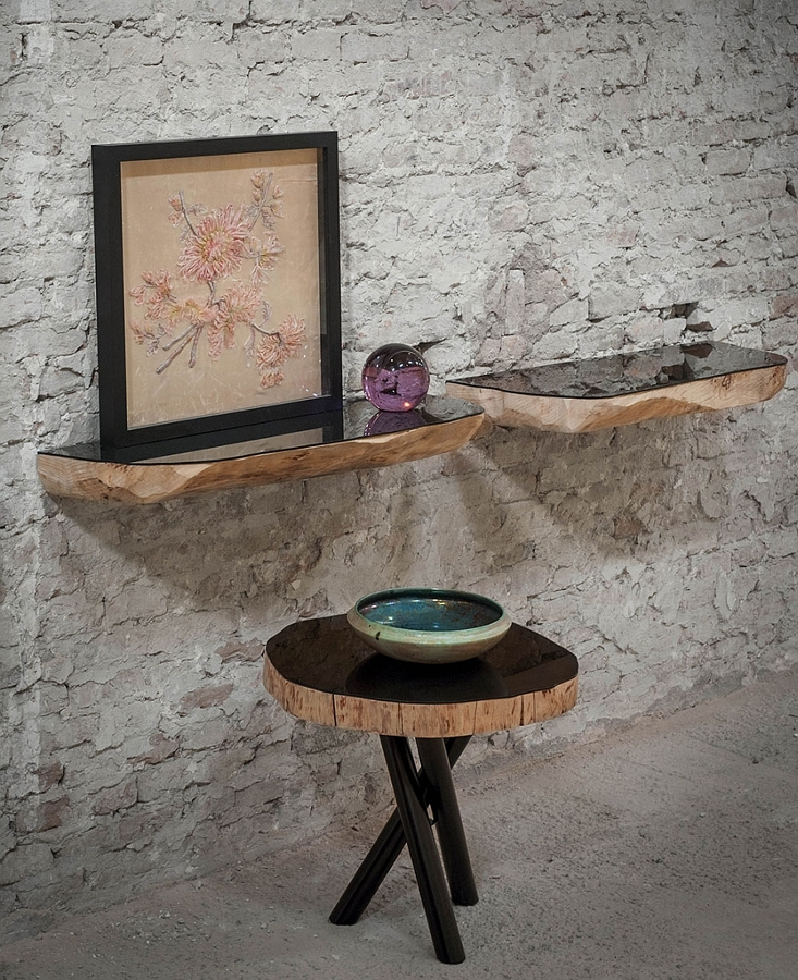 Exquisite-tree-trunk-shelves-with-a-modern-polished-surface