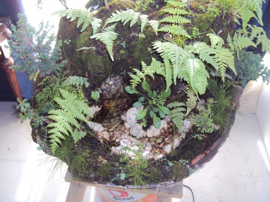 Cinco canteras paisajes en miniatura ideas dise o de for Diferentes jardines
