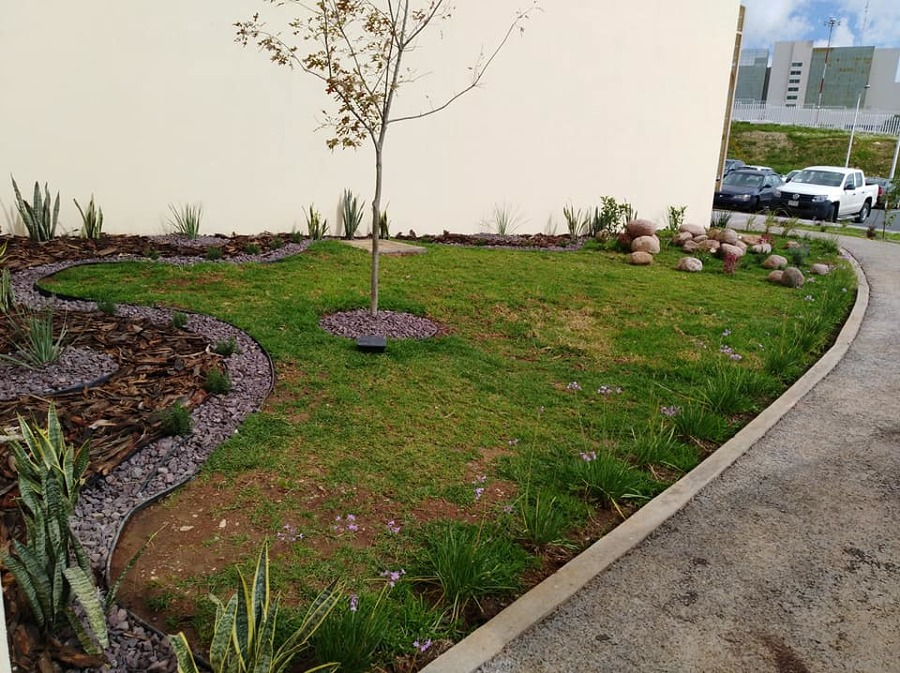 Jardineria en guarderia ideas arquitectos for Guarderia tu jardin