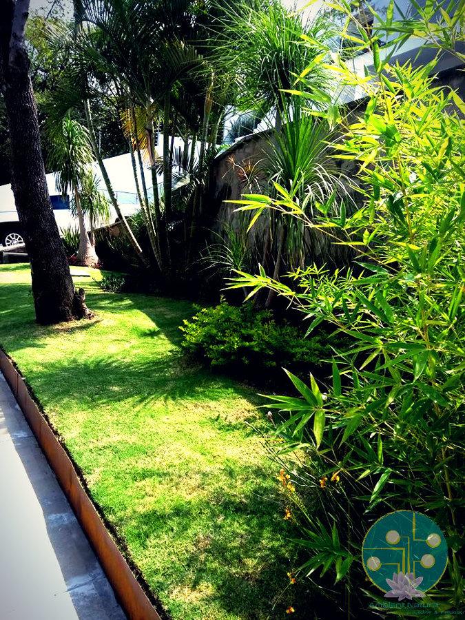 Jardín de Ingreso Ambient Natura