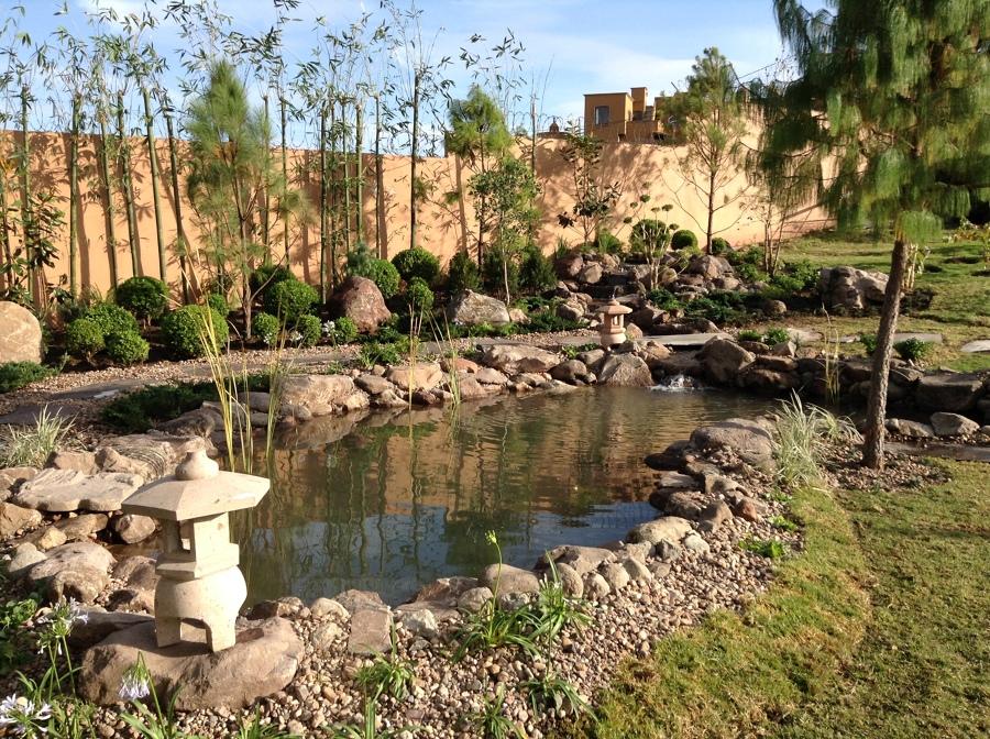 Proyectos de jardineria sistemas de irrigacion estanques for Estanques naturales para jardin
