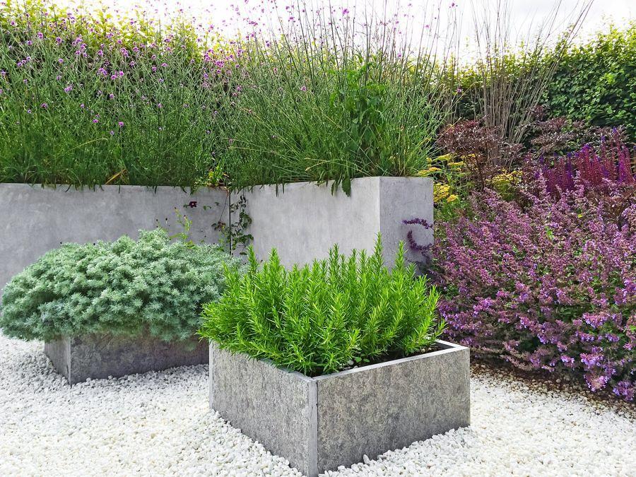 Jardín mediterráneo con plantas aromáticas