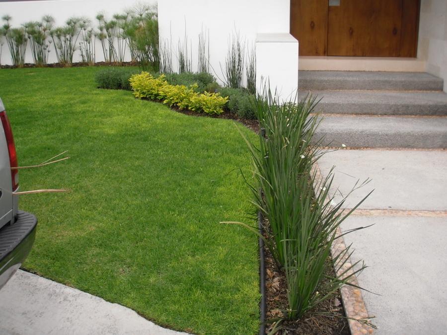 Foto jard n residencial de todo jard n 57795 habitissimo for Plantas minimalistas para exteriores
