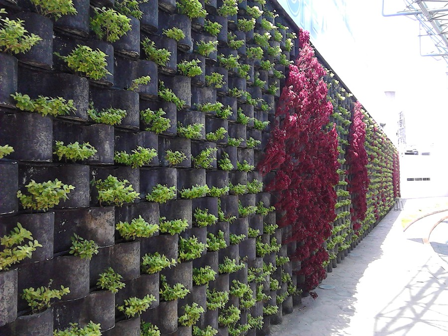 Foto jardin vertical floresta cfe de enfoque - Construir jardin vertical ...