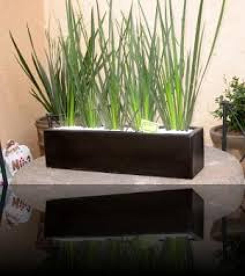 Foto jardinera de agaves 1 de proyectos de arquitectura y - Jardineras para interiores ...