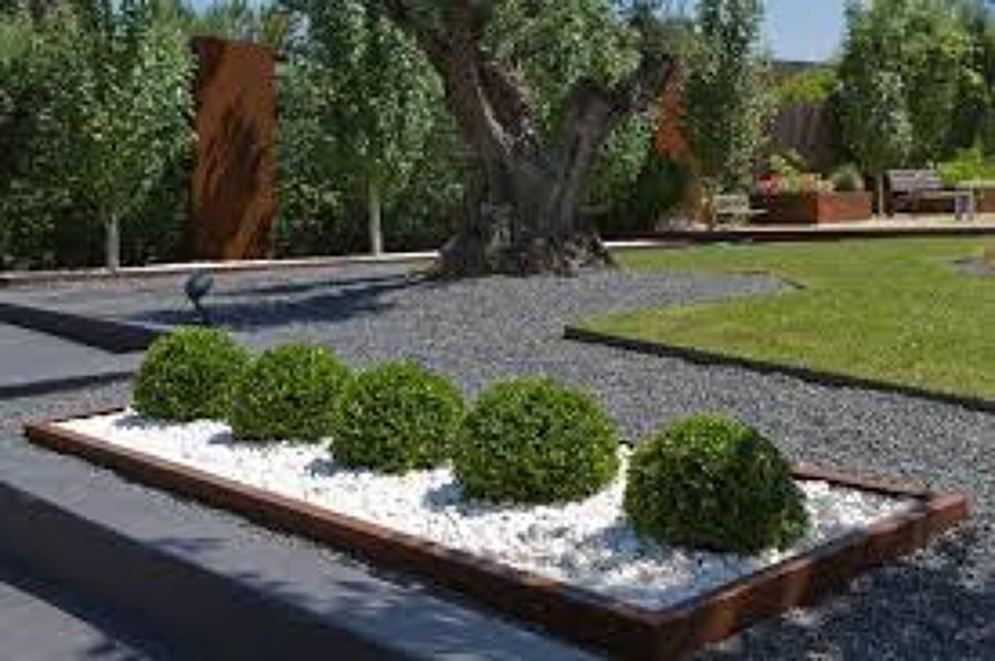 Foto jardinera de rbol bola de proyectos de arquitectura for Arreglo jardines exteriores