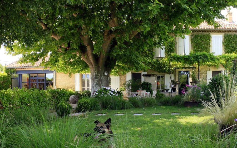 Foto jard n con rbol grande 238758 habitissimo for Arboles sombra jardin