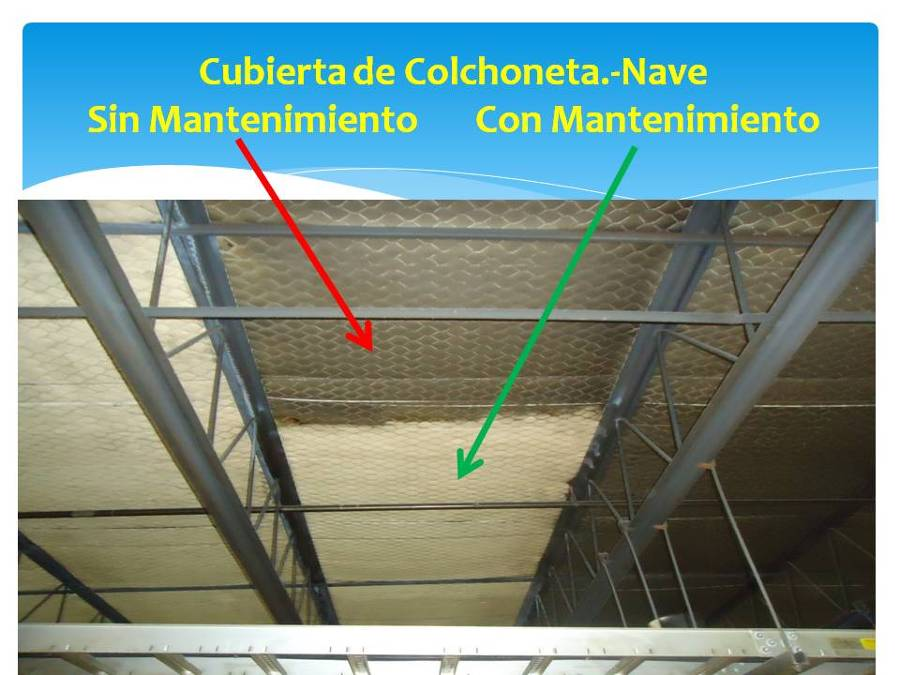 Mantenimiento a cubierta (Nave Industrial)