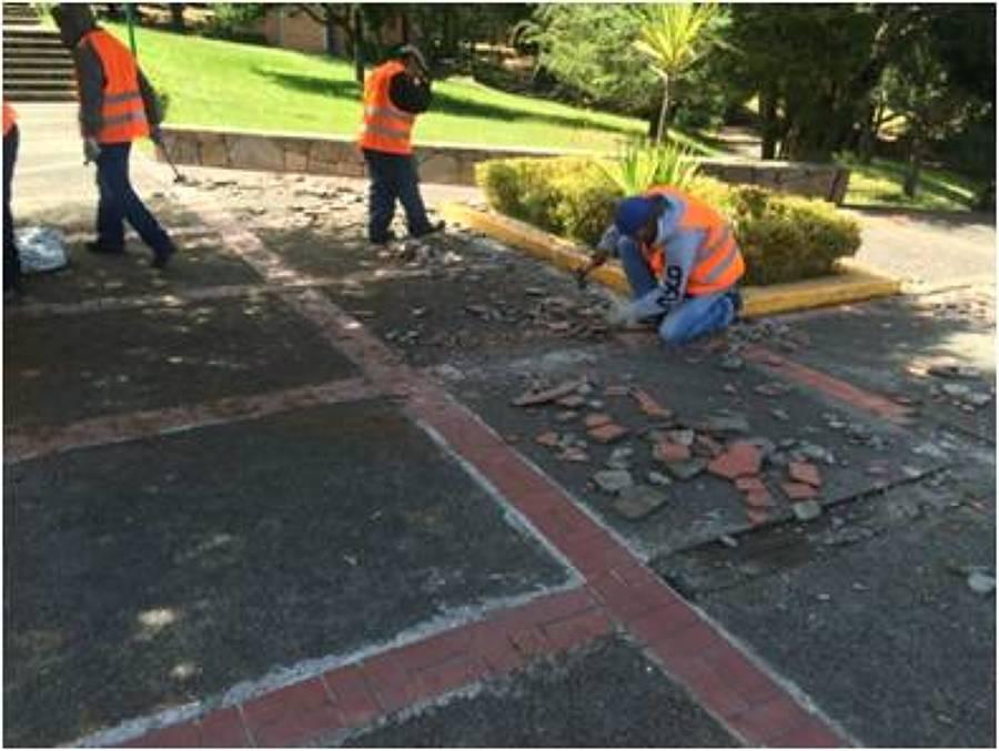 mantenimiento andadores y areas comunes