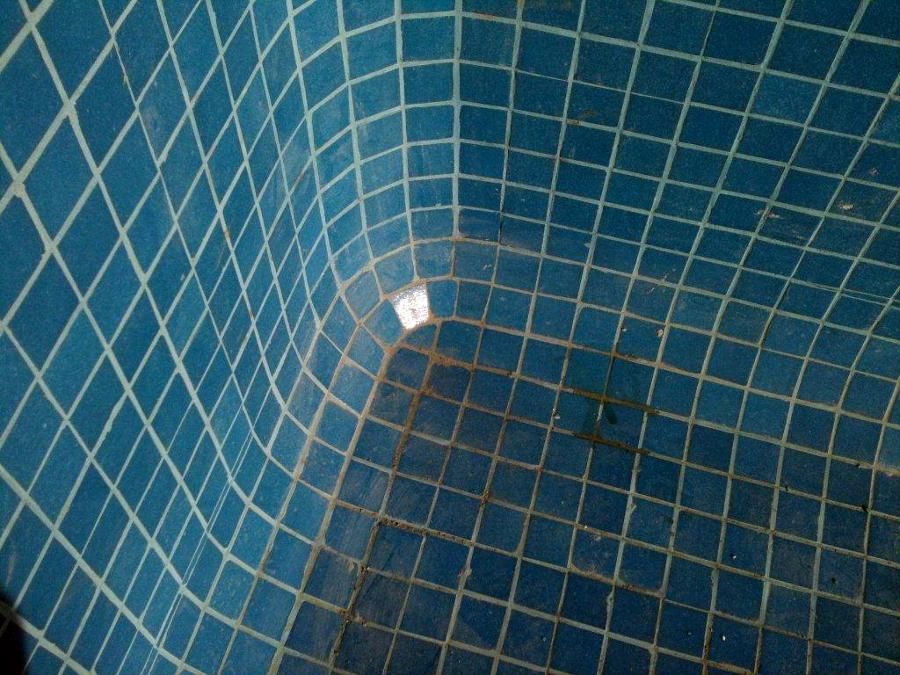 Media Caña De Azulejo Tipo Veenciano 5 X 5 y Alineación Perfecta