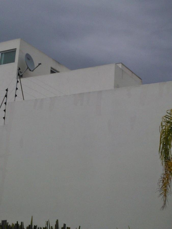 Muro en jardín