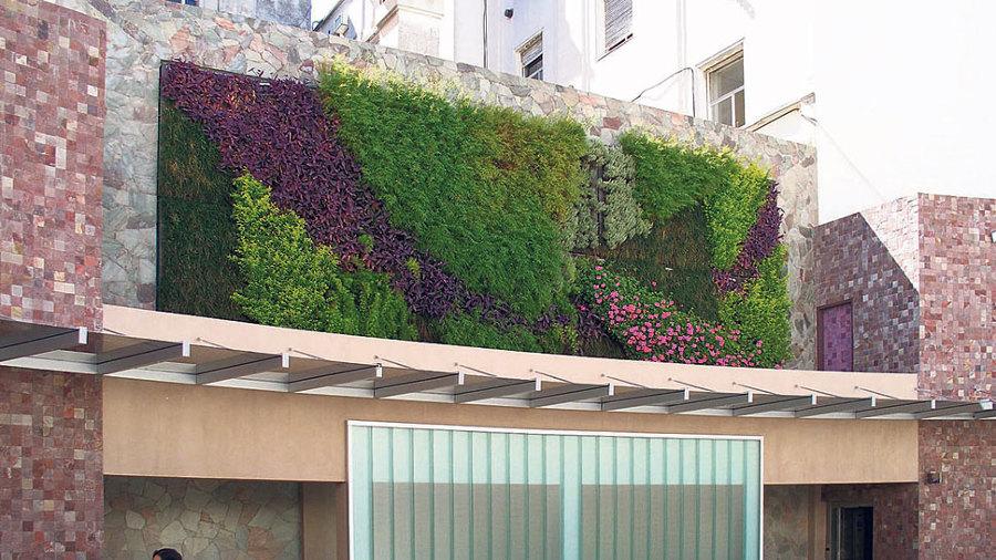 Foto muro verde o muro lloron de jardineria garces for Jardineros en xochimilco