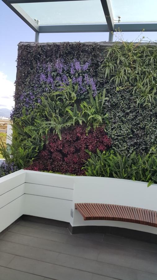 Muro Verde y Banca de asiento circular en terraza