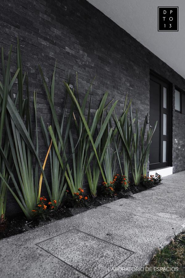 Paisajismo y Jardinería