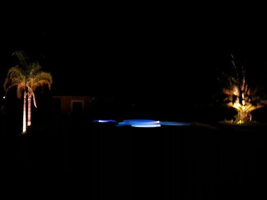 Foto palmeras y alberca de av iluminaci n 170228 for Iluminacion para palmeras