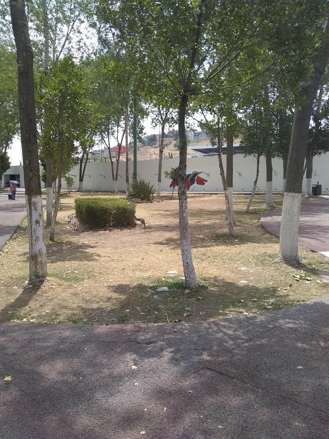Parque nuevo México