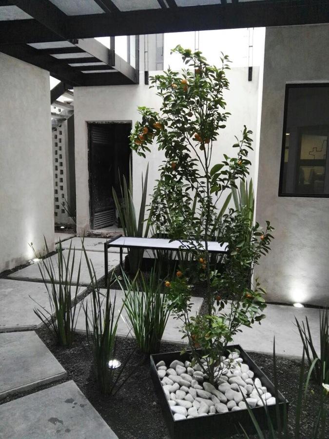 patio interior 3