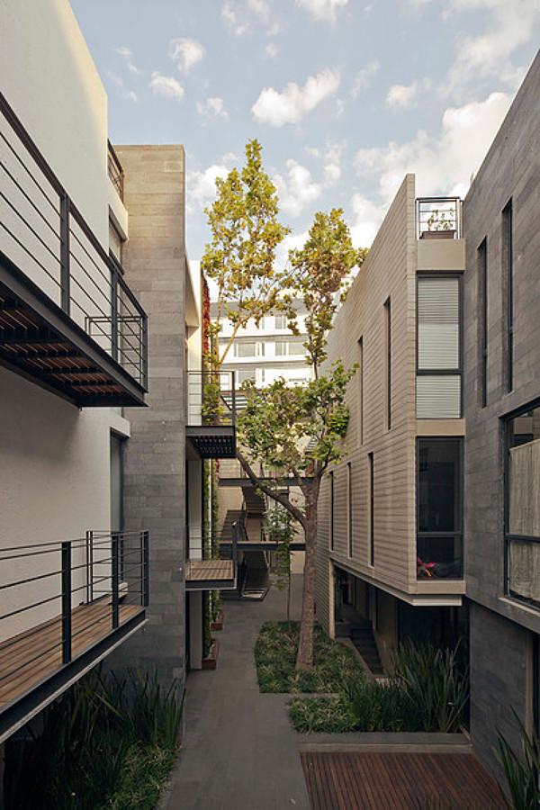 Patio interior que integra árboles originales