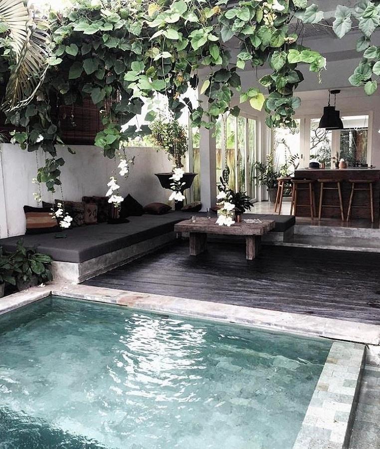 Foto terraza con alberca peque a y plantas 243943 for Terrazas economicas chile