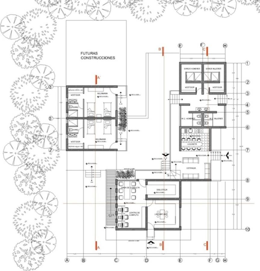 Foto planta arquitect nica de talsus cm 212790 habitissimo for Niveles en planos arquitectonicos
