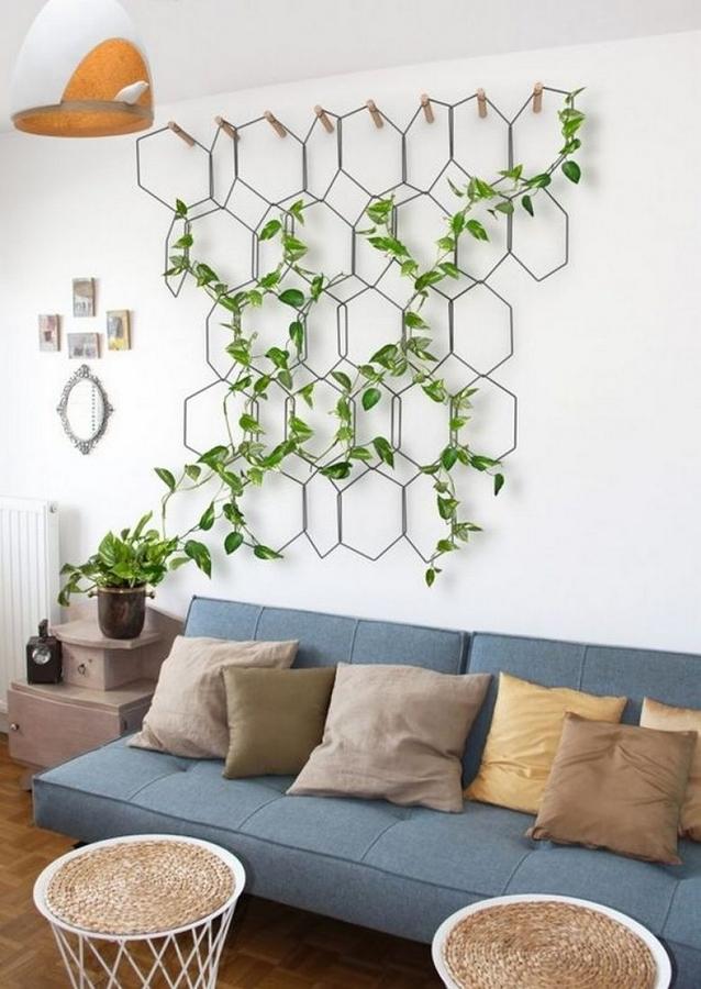 Sala con planta trepadora decorativa