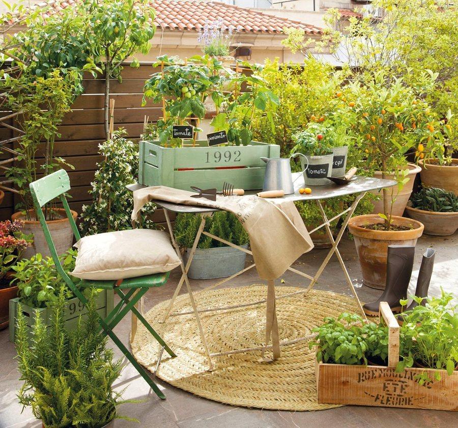 terrazas con plantas