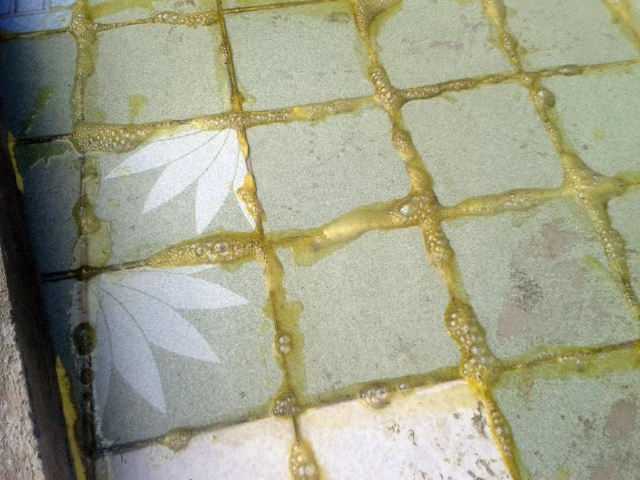 Foto preparacion para lechariado a loseta en azotea de for Losetas para recamaras