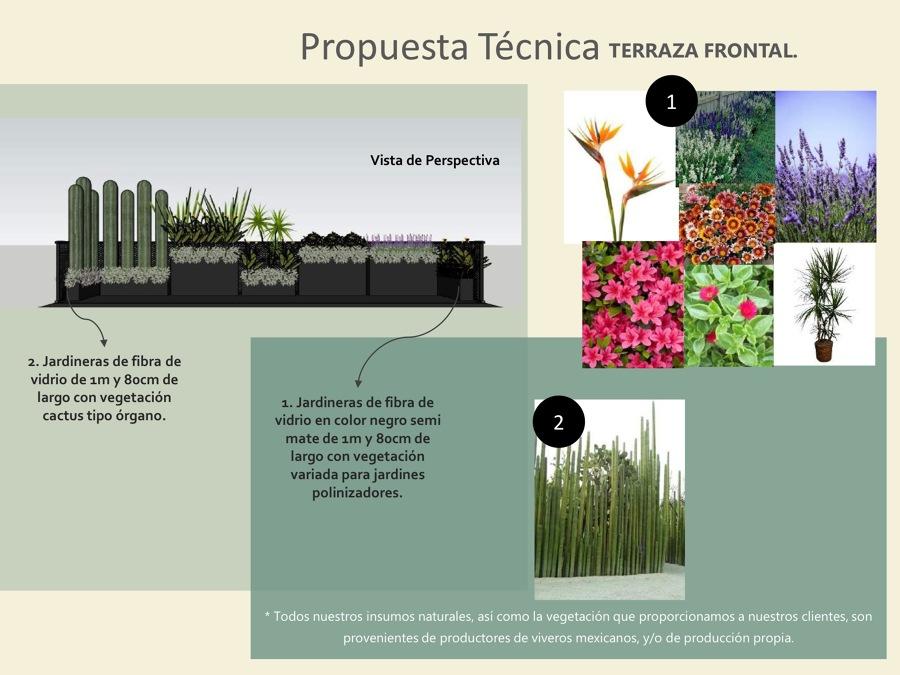 Propuesta de Terraza Frontal.
