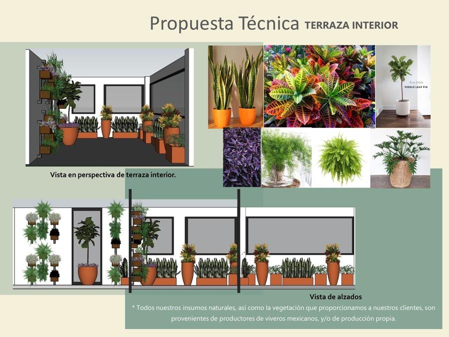 Propuesta de Terraza Interior.