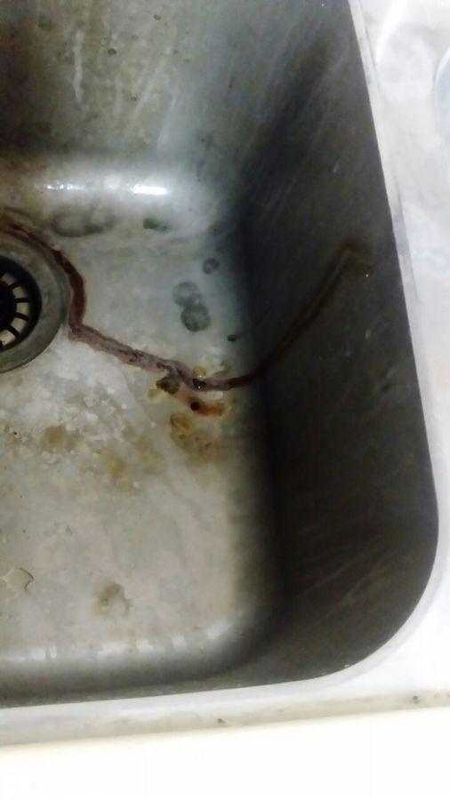 3 Remodelación de cocina, baños y pintura general – ante.jpg