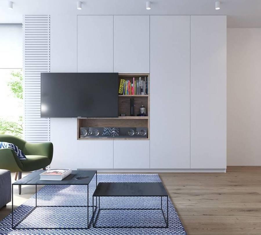 salón con módulo de almacenaje y TV