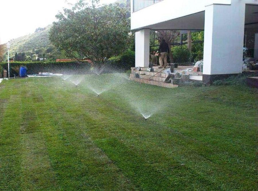 Foto sistemas de riego para jardin de paisajes veticales for Sistema de riego jardin vertical