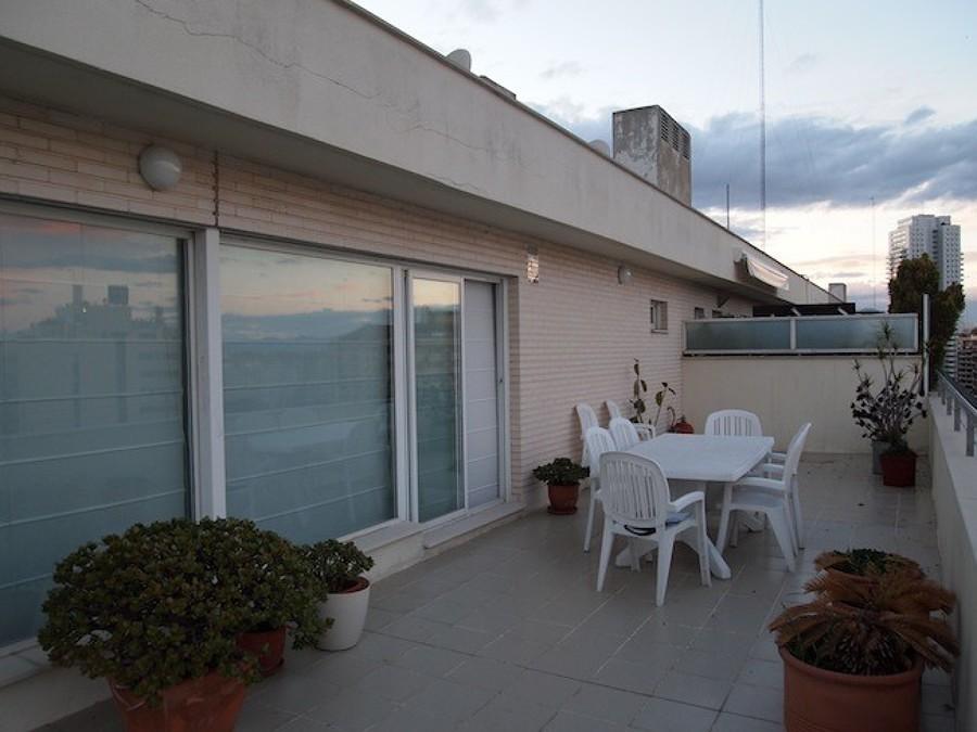 Terraza con plantas, mesa y sillas