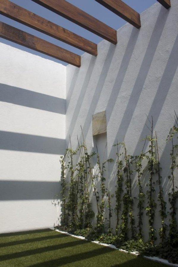 Terraza Interior