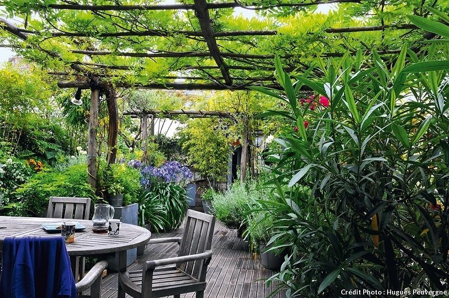 Terraza con jardín