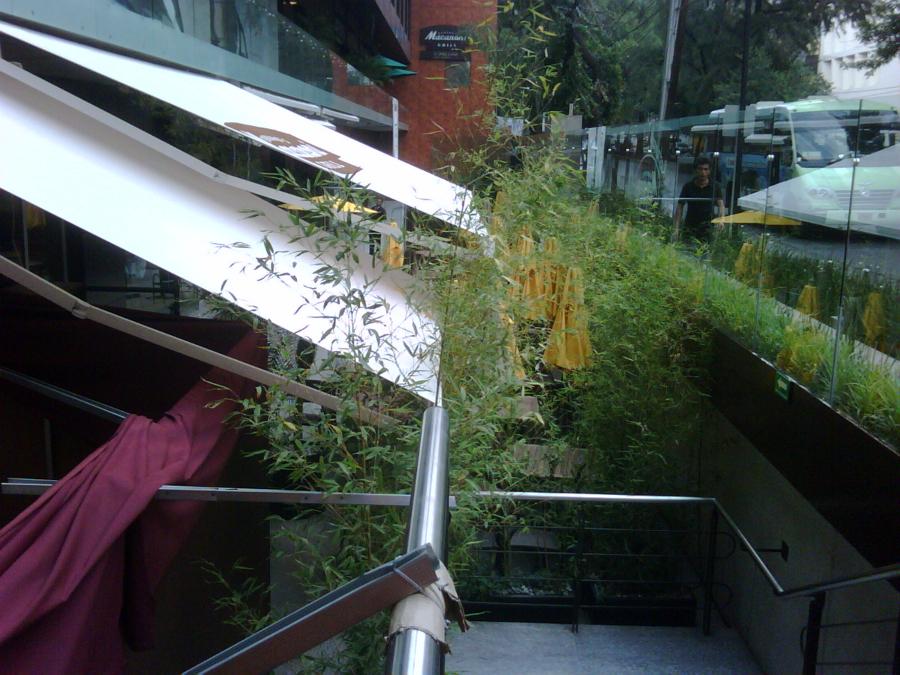 Zen Decoracion Aguascalientes ~ Para esta terraza exterior de este centro comercial, necesitaban