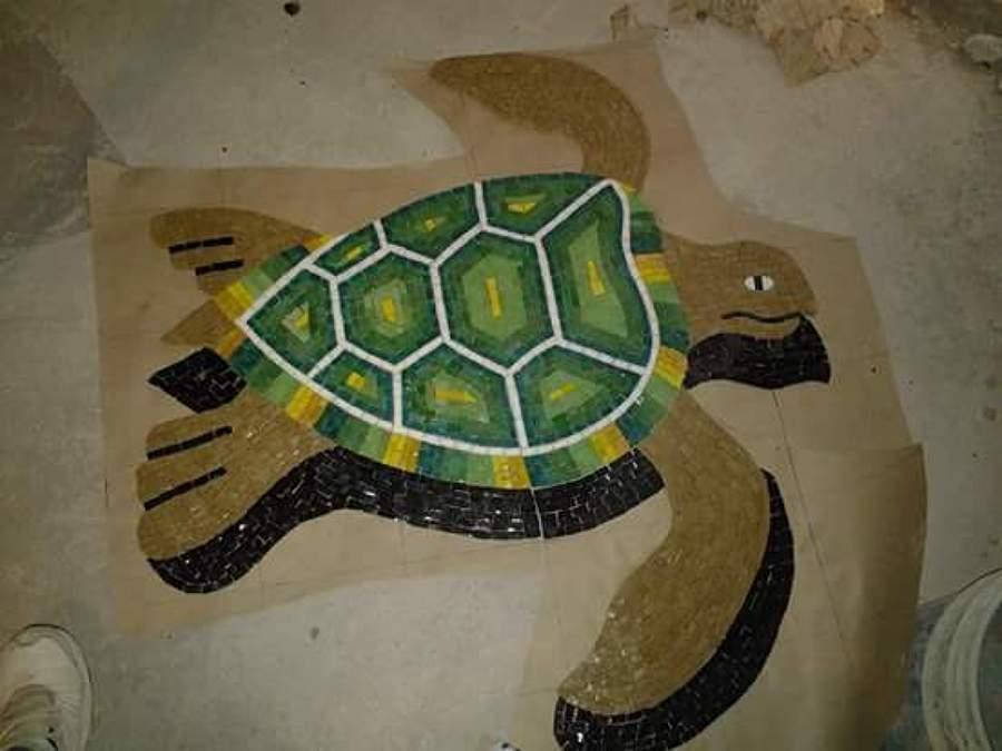 Foto tortuga verde con sombra de decorador de albercas - Decorador de fotos gratis ...