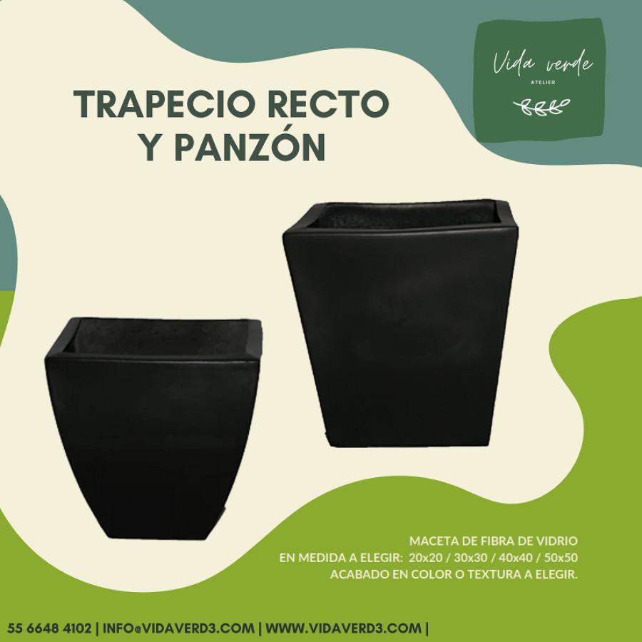 Trapecio Recto y Panzón