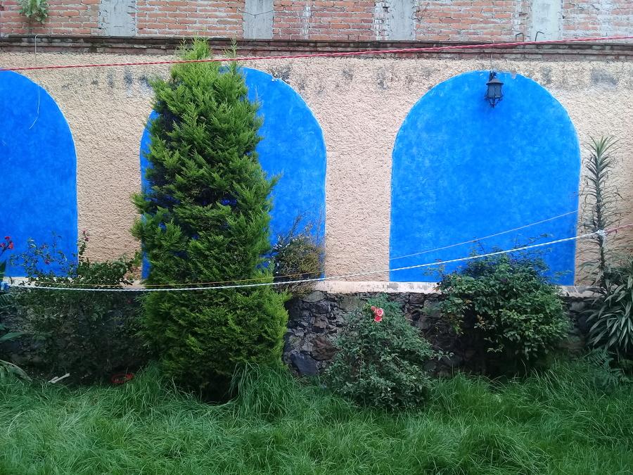 Regularizaci n de jard n en xochimilco cdmx ideas jardineros for Jardineros en xochimilco